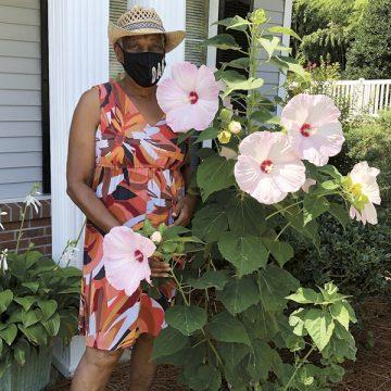 Happy hibiscus