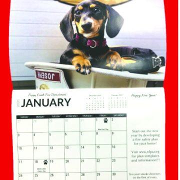 Pups calendar raises money for animal shelter